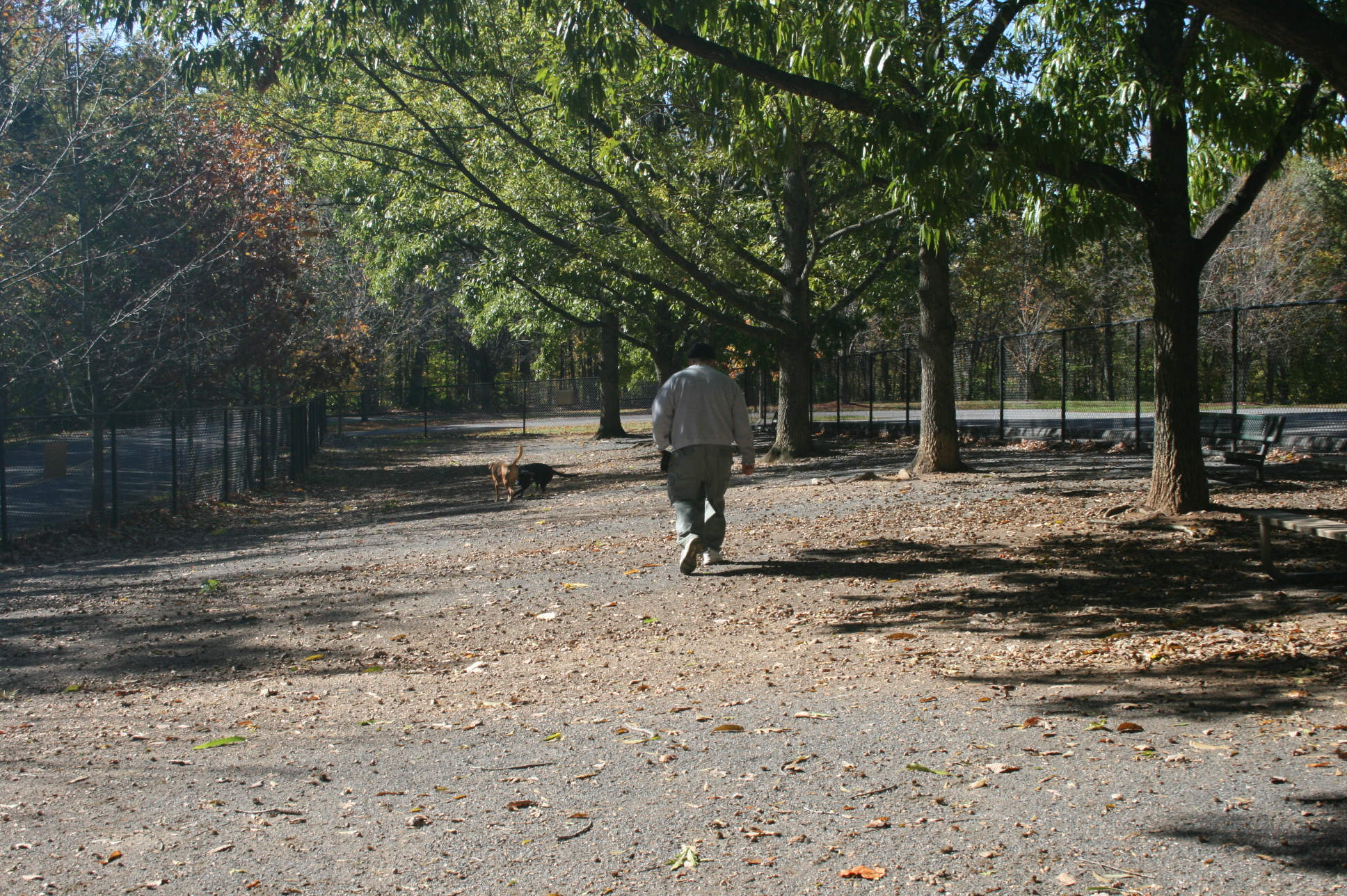 Off-leash area