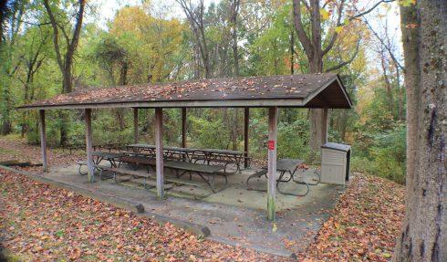 Nature reserve, State park, Leaf, Tree