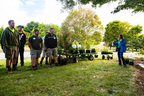 Green, Social group, Tree, Community, Botany