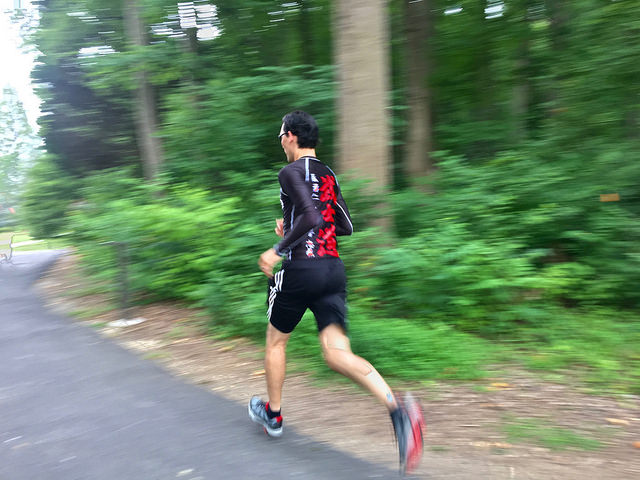 Forest to Fitness