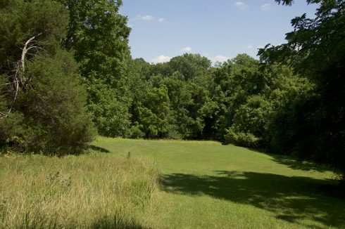 View of Adventure Conservation Park