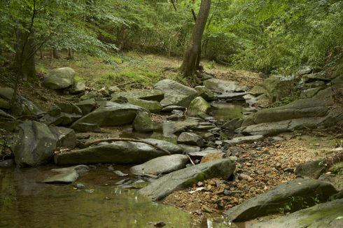 River at Beret Neighborhood Conservation Area