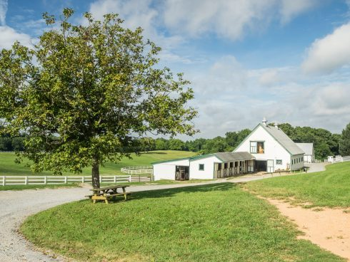 Facility at Callithea Farm Special Park
