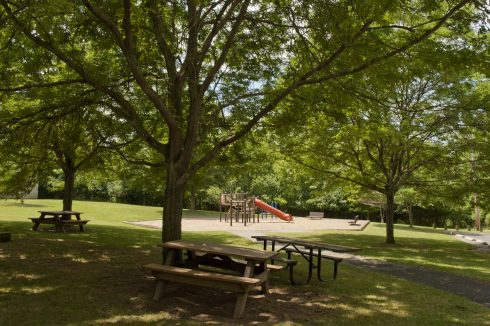 View of benches and a playground at Dewey Local Park