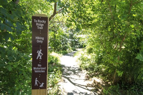 Sun peeks through the trees at the entrance to the Rocky Ridge Trail , sign post showing