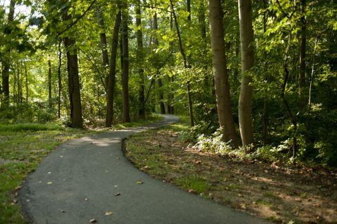 Pathway at Martin Luther King Jr. Recreational Park