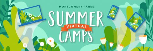 Illustrated graphics for Montgomery Parks Virtual Summer Camps