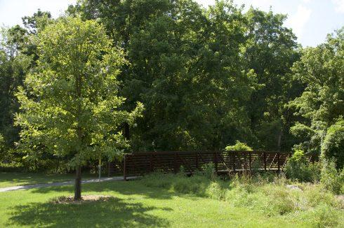 Bridge at Winding Creek Local Park