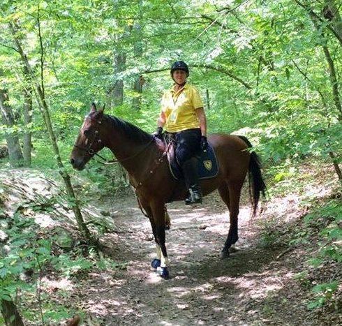 Park Police Volunteers - Karen and Horse Flint