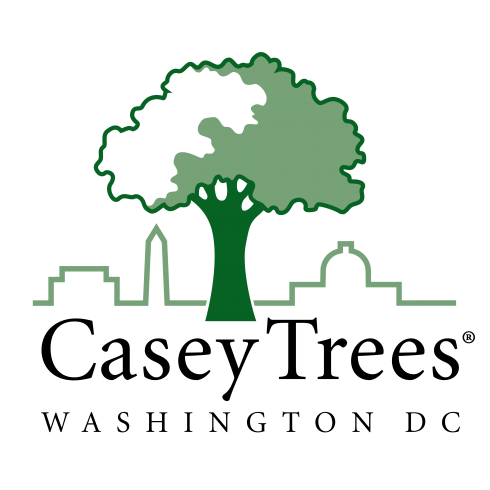 Casey Tees logo