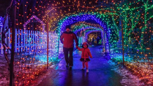 Man and child walking in Garden of lights display