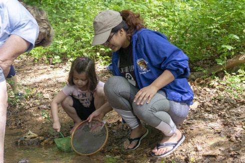 Parent and child exploring a stream