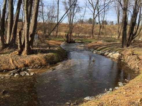 Body of water, Natural landscape, Natural environment, Water, Riparian zone, Tree, Bank, Stream, Creek, Watercourse