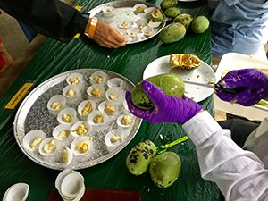 Pawpaw fruit cut into single serve tasting portions on a tray