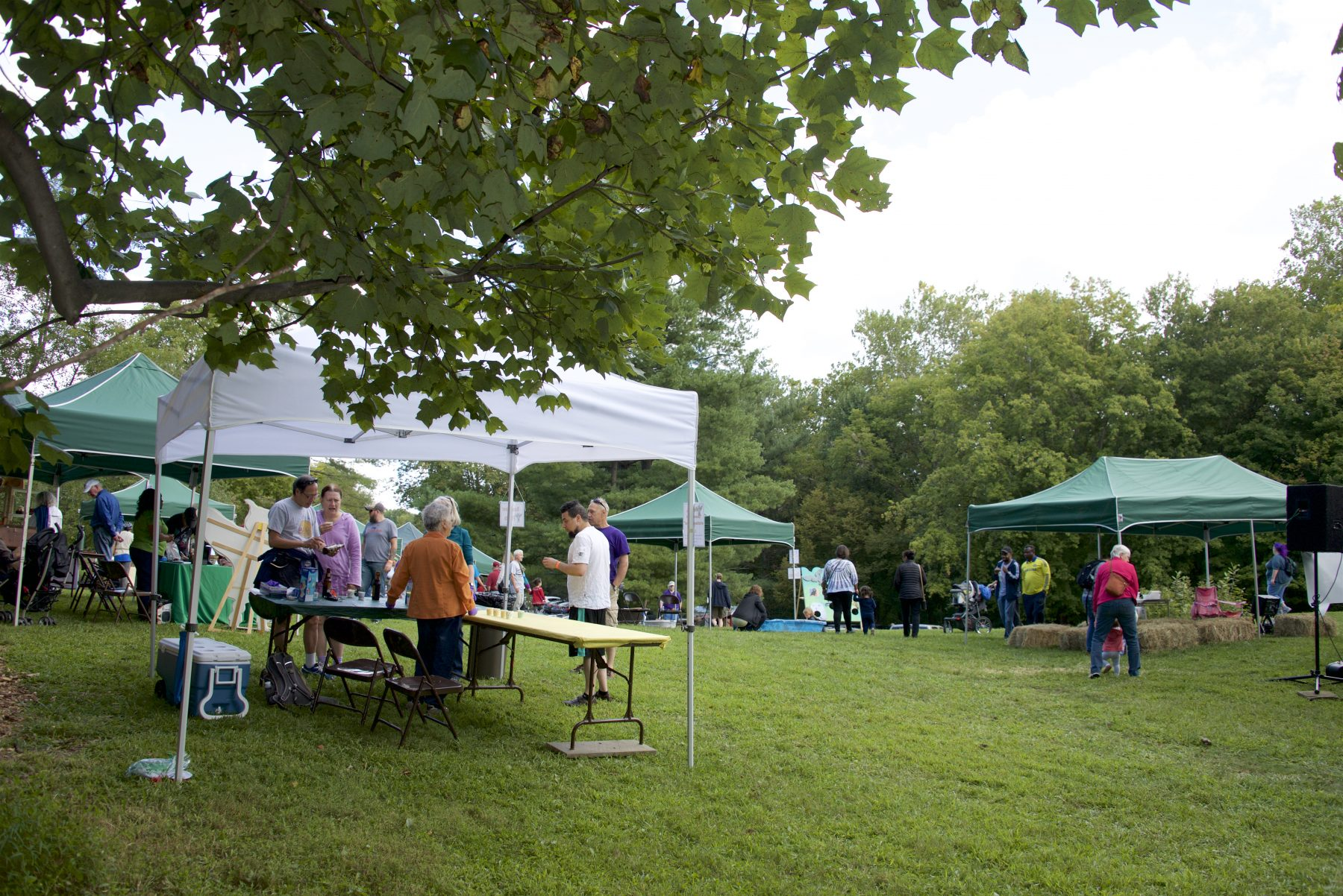 Tents and people attending Pawpapw festival at Meadowside Nature Center