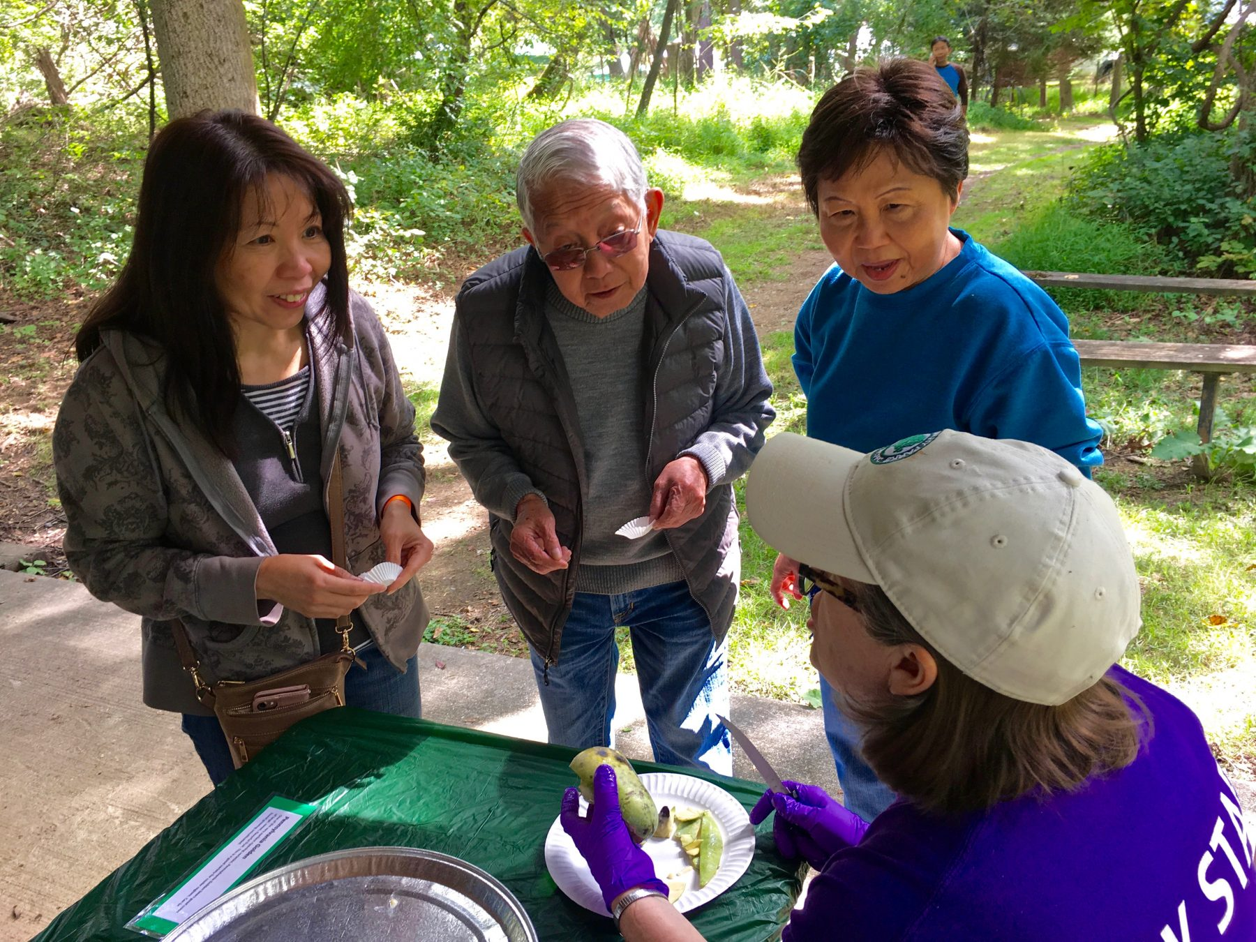 Three adults learn about growing pawpaw trees