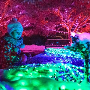 Little girl with winter clothes, hat and gloves, looking at the brightly colored lights at Garden of Lights exhibit