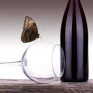 Butterfly on a wine glass next to a bottle of wine