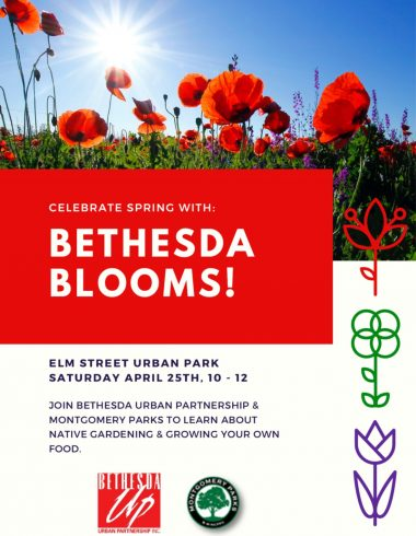 Join Montgomery Parks for Bethesda Blooms on April 25, 2020 from 10 a.m. to noon at Elm Street Urban Park. During the event attendees will learn about native gardening and growing food.