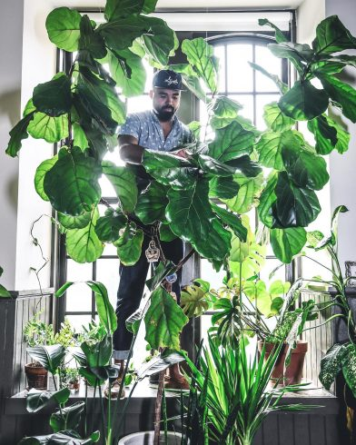 Photo of Hilton Carter standing in room with large plants