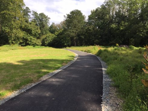 Natural landscape, Road, Asphalt, Lane, Grass, Road surface, Tree, Thoroughfare, Trail, Sky