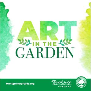 Graphic for Art in the Garden event, Green and yellow fonts with green bar at bottom with Brookside Gardens logo and Montgomery Parks logo