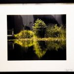 Reflection Pond by Renee Ruggles $200, photograph