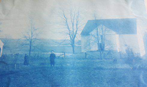 Blue, Sky, Atmospheric phenomenon, Atmosphere, Winter, Freezing, Morning, Tree, Water