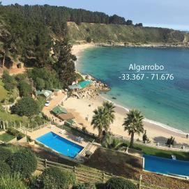 algarrobo.png