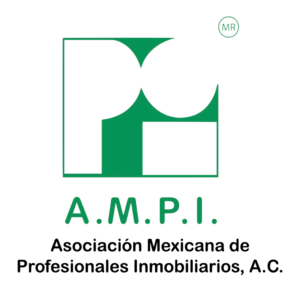ampi2-1012x1024.png