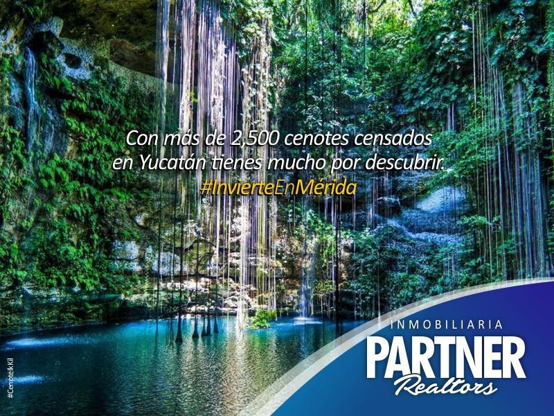 Cenote_Ik_Kil.jpg
