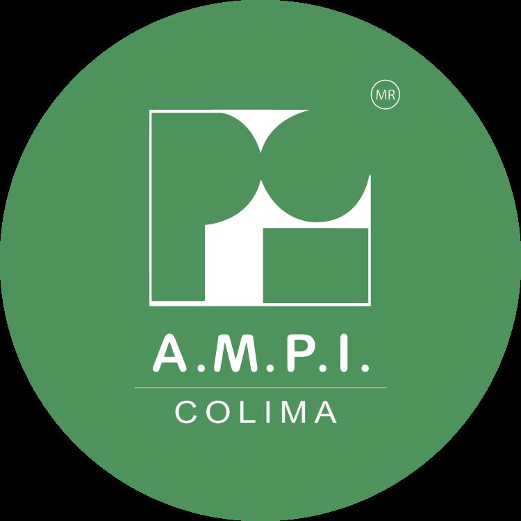 logo_ampi-01.png