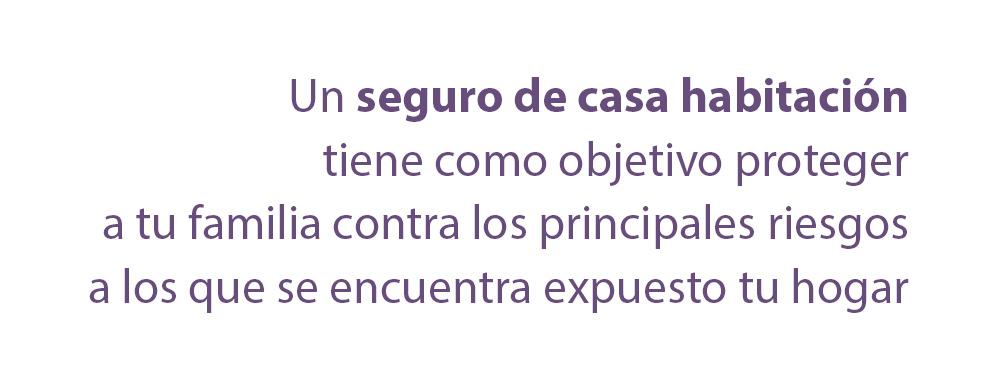 seguros_02.jpg