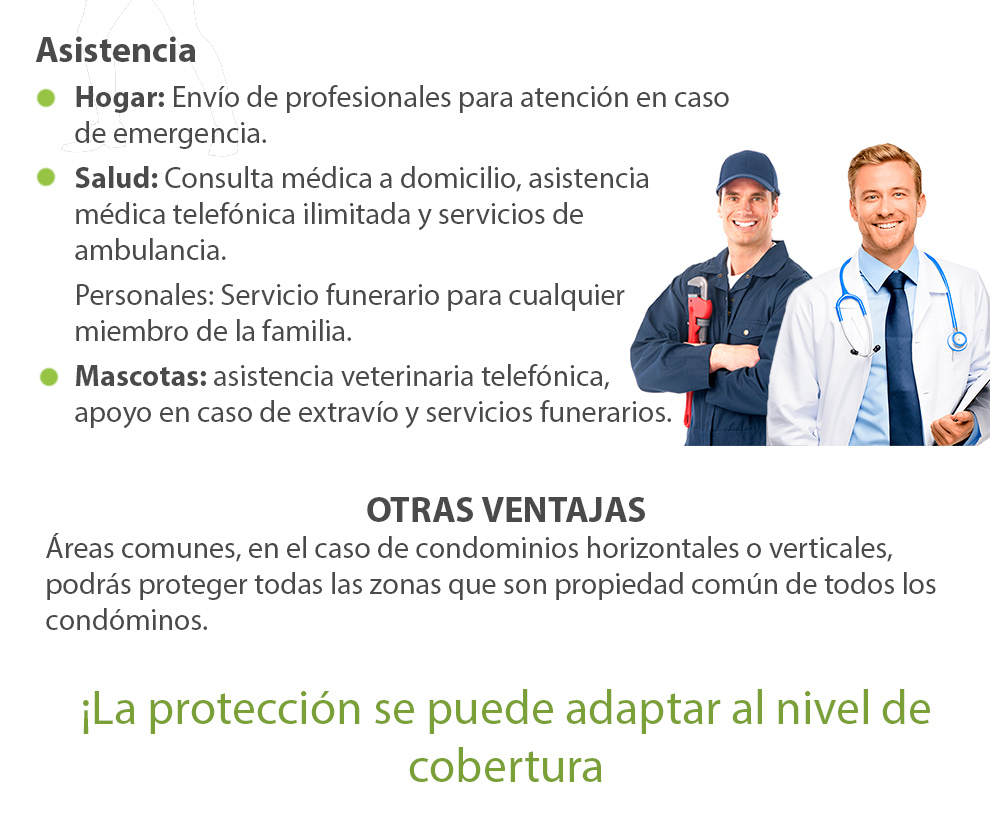seguros_05.jpg