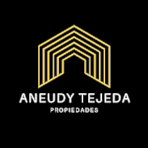 aneudy_tejeda__2_.png