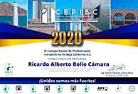 RicardoAlbertoBolioCamara