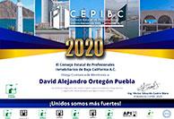 DavidAlejandroOrtegonPuebla