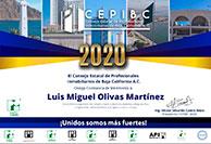 LuisMiguelOlivasMartinez