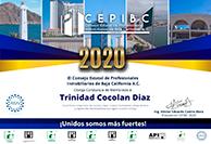 TrinidadCocolanDiaz