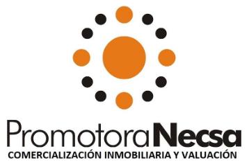 logo_necsa_valuacion.png