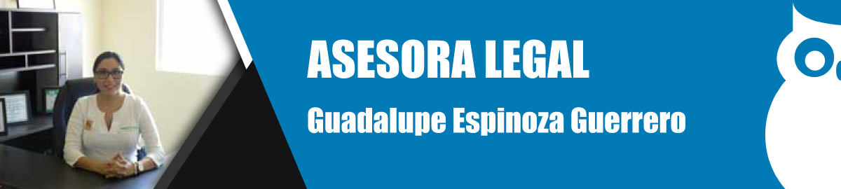 Banner-Titulos-GuadalupeGuerrero.png
