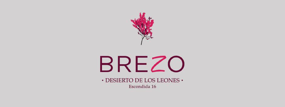 1Brezo-Desierto-De-Los-Leones-portada