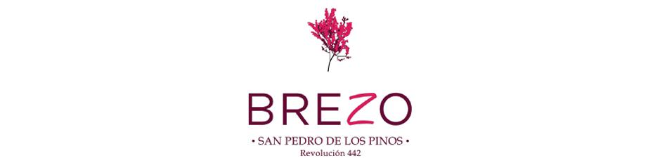 1Brezo-San-Pedro-de-los-Pinos-logo
