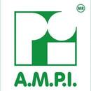 AMPI Sección Ciudad de Puebla