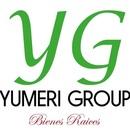 Yumeri Group, Bienes Raíces