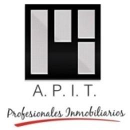 logo_apit.jpg