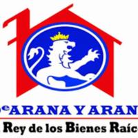 Martin Arana