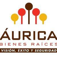 Aurica Bienes Raices