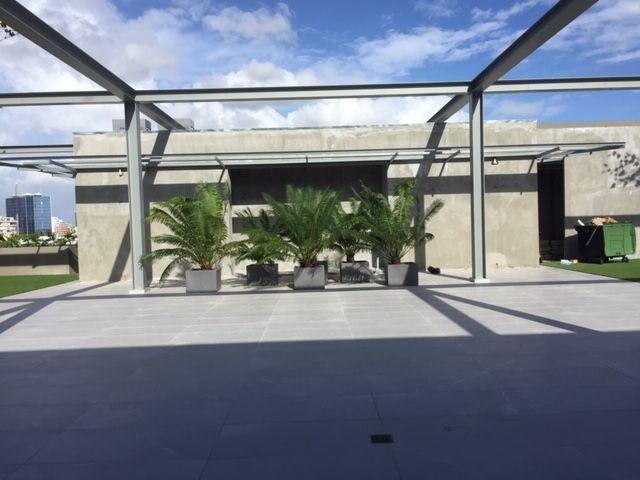 8 de 9: Area de rooftop destechada.