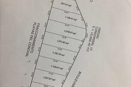 Medium eb cw4824